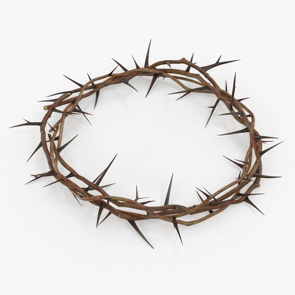 3D crown thorns