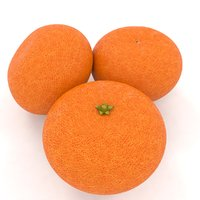 mandarin orange fruit model