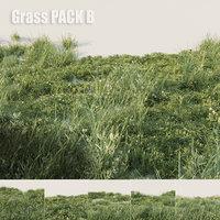 Grass pack B