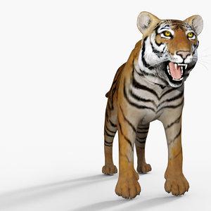 3D model mischief tiger