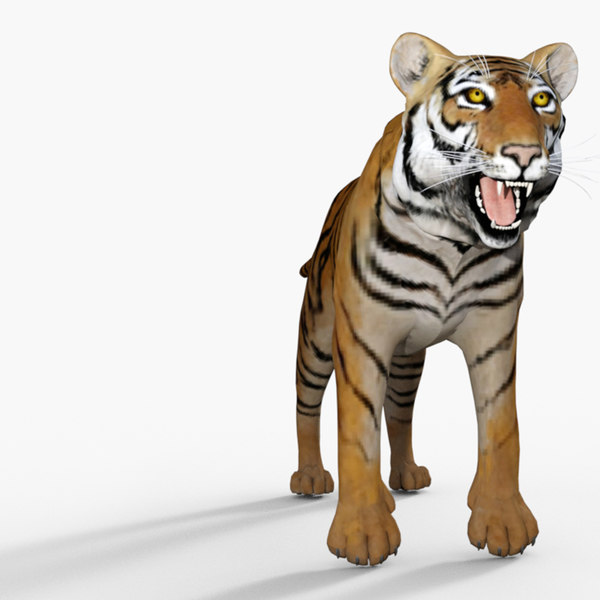 3D model mischief tiger