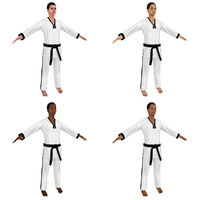 female taekwondo woman 3D
