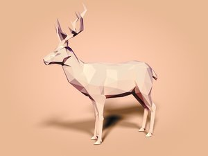 3D cartoon toon deer