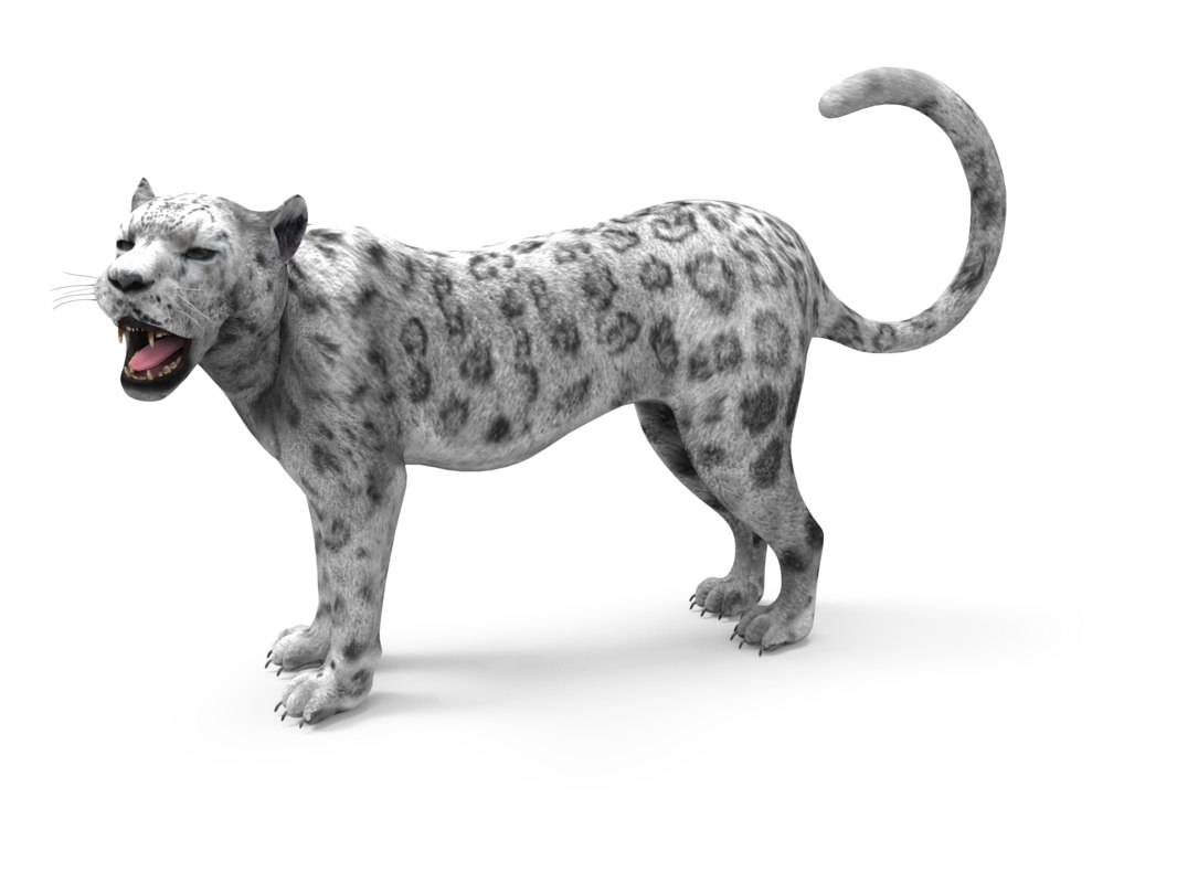 leopard rigged animation 3D