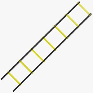 3D model agility ladder training
