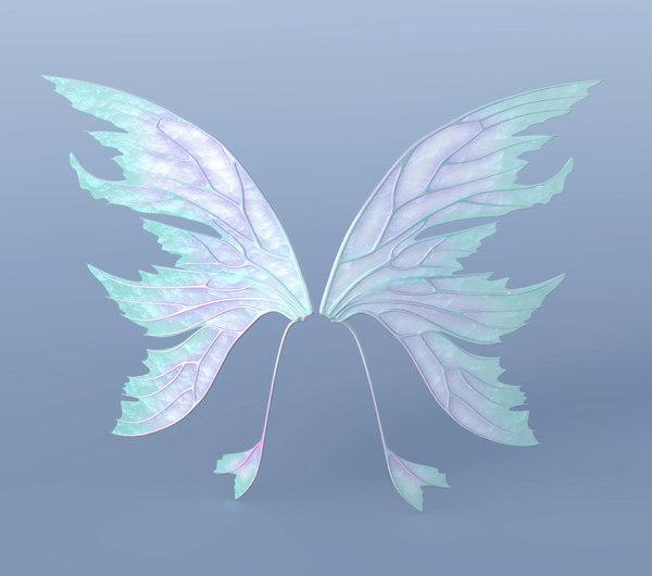 3D set fairy wings