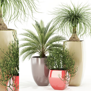 3D plants 101 awesomeplanters planter