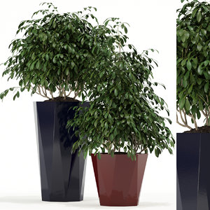 3D plants 102 awesomeplanters planter