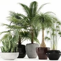 3D plants 103 model