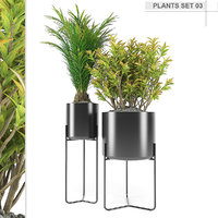 3D plants set 03 model
