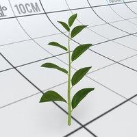 3D plant stalk leaves