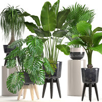 3D ornamental plants pots