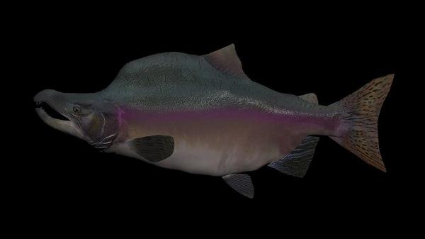 3D pink salmon