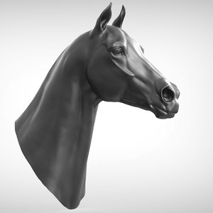 3D model race horse head