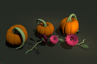 Flowers and Pumpkin