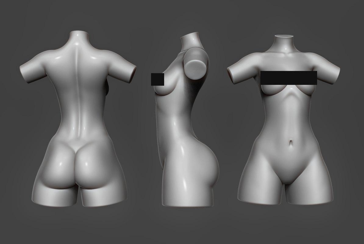 3D female torso