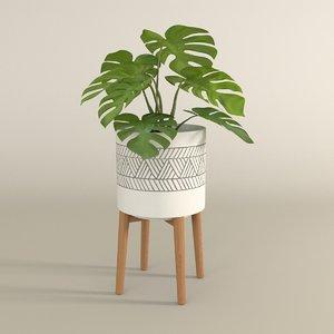 3D monstera pot plant