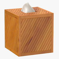 3D tissue box model