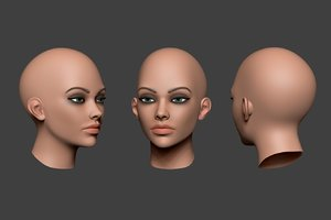 3D model zbrush head
