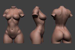 female torso 3D model