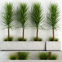 3D plants 105 model