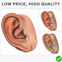 3D realistic human ear model