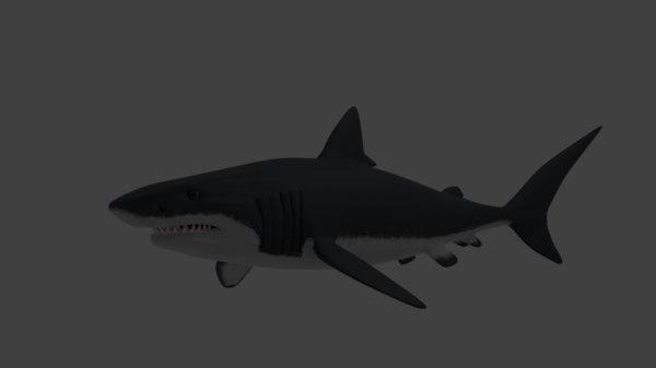 white shark 3D