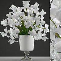 3D bouquet flowers iris