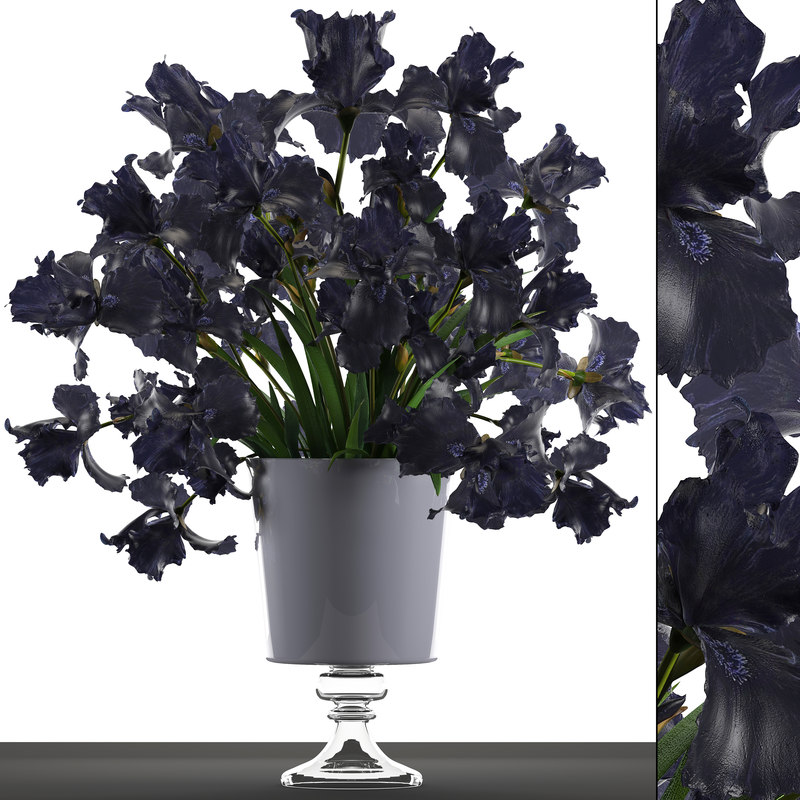 3D model flower bouquet black