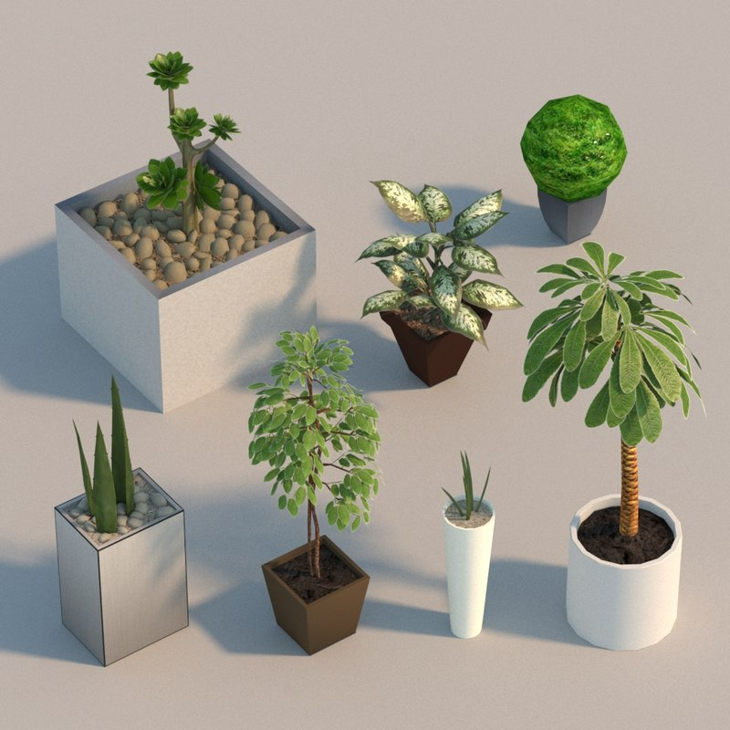 interior flowers 3D model