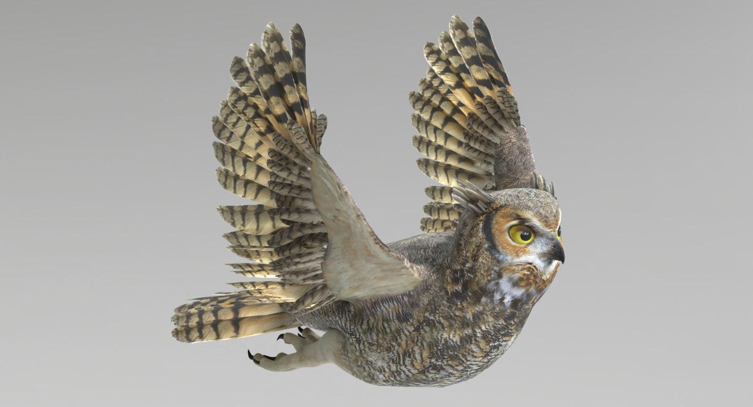 3D set birds owl animations