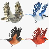 Animated Birds Set