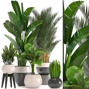 3D ornamental plants pots