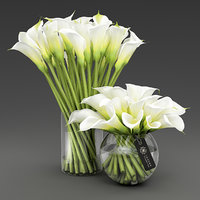 Two vases with Calla lilies.