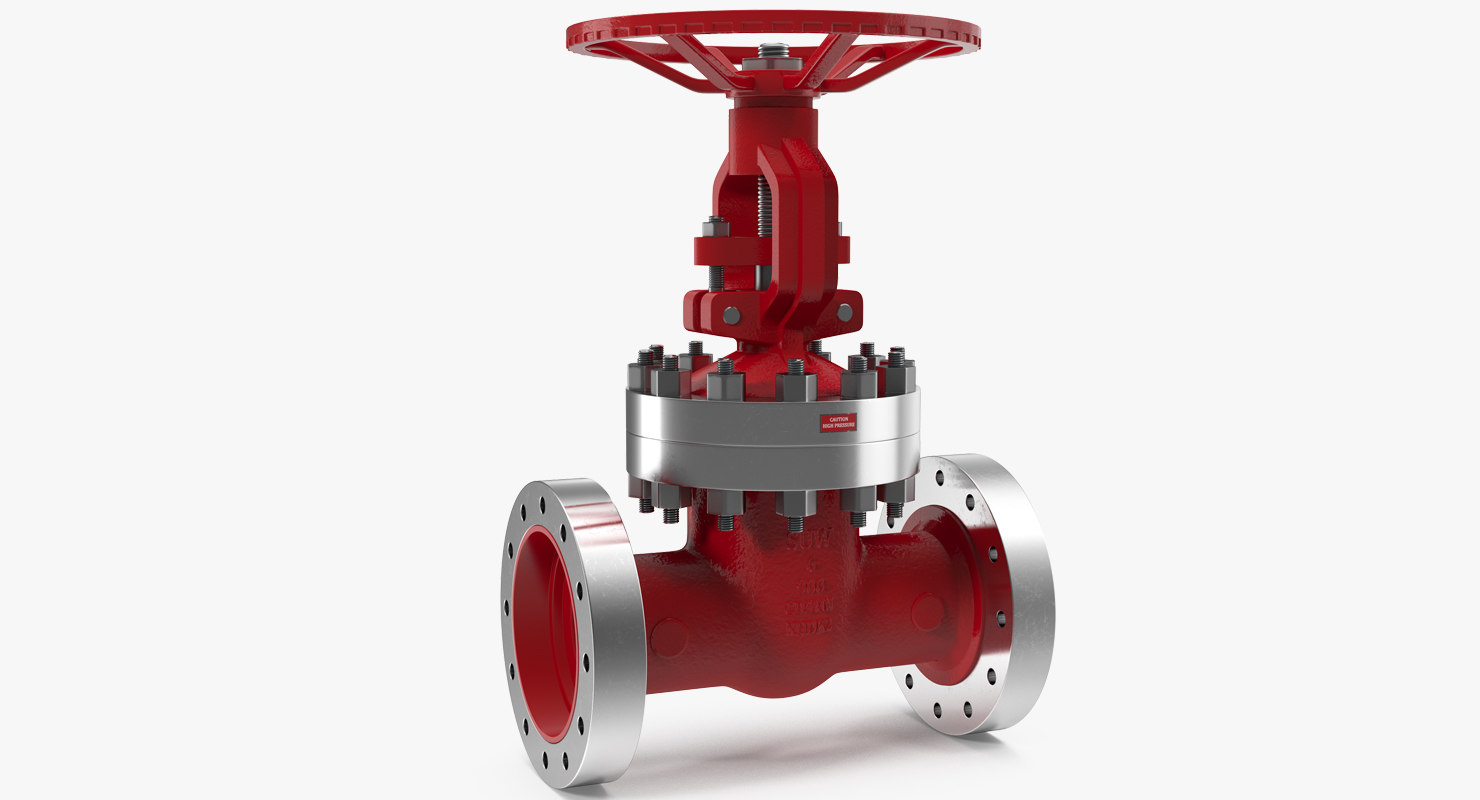 wedge gate valve 3D model