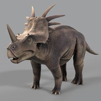 Styracosaurus (Low Poly)