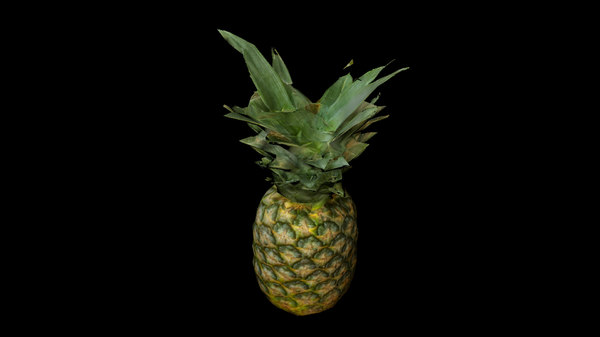 3D ananas pineapple