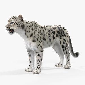 3D snow leopard fur