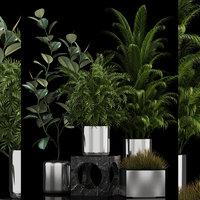 plants 106 3D model