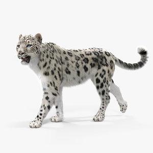 3D snow leopard walking pose model