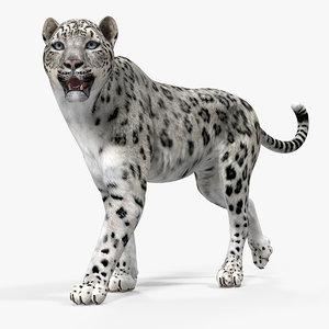 3D model snow leopard walking pose