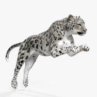 3D panthera uncia jumping pose
