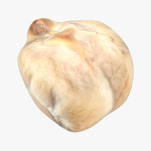 realistic chickpea 3D model