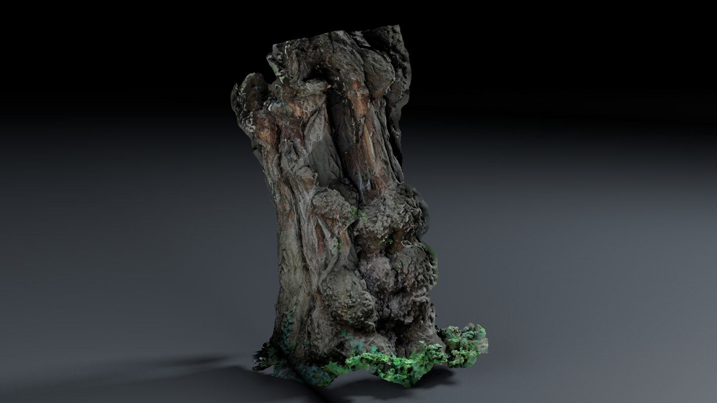 photoscan - bark 3D model