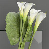 3D calla lilies bouquet model
