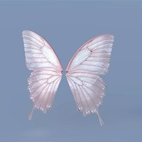 Fairy or Butterfly Wing Set B