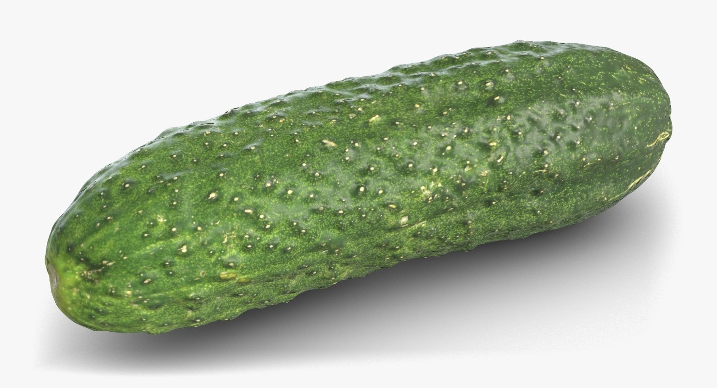 3D cucumber 3