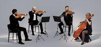 scanned string quartet 3D