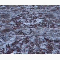 frozen winter ground surface model