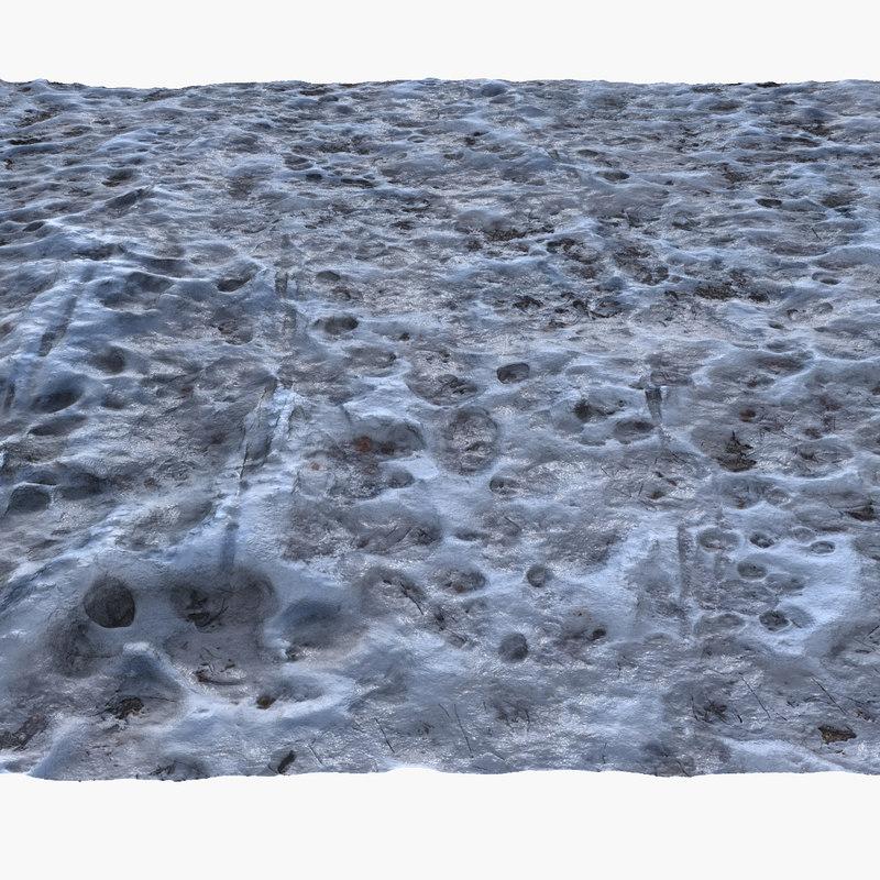 3D frozen winter ground surface model
